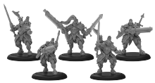 Order of Illumination Resolutes  Mercenary Morrowan Unit (metal)